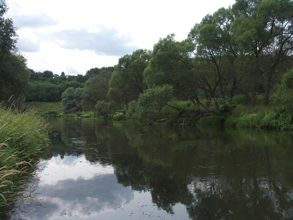 Шашлык на Истре 2006-2